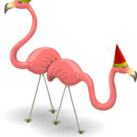Flamingos party hats